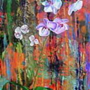 Orchid O Art Print