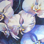 Orchid Study With Squares Art Print