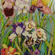 Orchids And Irises II  Art Print