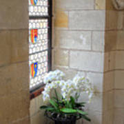Orchids In The Chateau Art Print