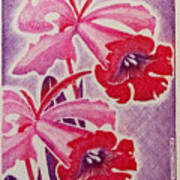 Orchids Of Orleans France 1967 Art Print