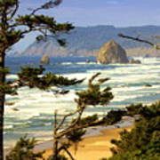 Oregon Coast 15 Art Print