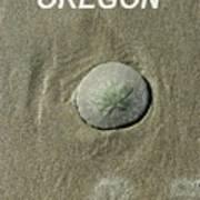 Oregon Sand Dollar Art Print