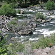 Oregon Stream Art Print