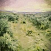 Oregon Trail 2 Art Print