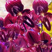 Oriental Orchid Garden Art Print
