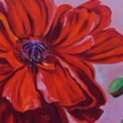 Oriental Poppy With Bud Art Print