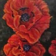 Oriental Poppys  Art Print