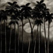 Original Moonlit Palm Trees  Art Print