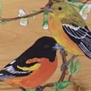 Orioles 1 Art Print