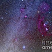 Orion And Canis Major Showing Dog Stars Art Print