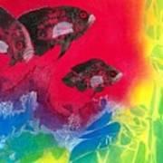 Oscars In Aquarium Art Print