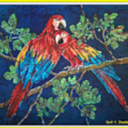 Out On A Limb- Macaws Parrots - Bordered Art Print