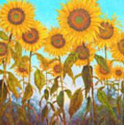 Ovation Sunflowers Art Print