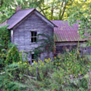 Overgrown Abandoned 1800 Farm House Art Print