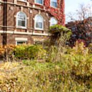 Overgrown Fall Garden Art Print