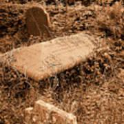 Overgrown Graves Art Print