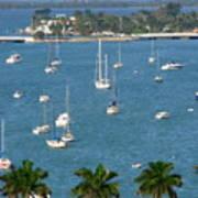 Overlooking A Miami Marina Art Print