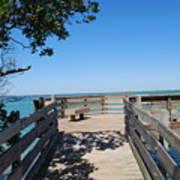 Overlooking Sarasota Bay Art Print
