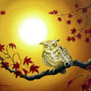 Owl In Autumn Glow Art Print