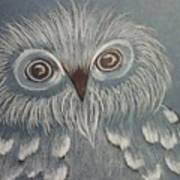 Owl In The Blue Art Print by Ginny Youngblood