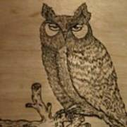 Owl Pyrography Art Print