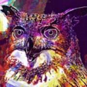 Owl The Female Eagle Owl Bird  Art Print