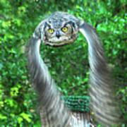 Owll In Flight Art Print