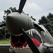 P - 40 Warhawk - 5 Art Print