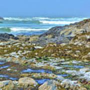 Pacific Coast Tide Pools Art Print