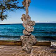 Pacific Rope Swing Art Print