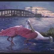 Packery Sunset Art Print