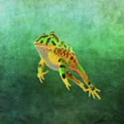 Pacman Frog Art Print