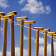 Paddles Hanging In A Row Art Print
