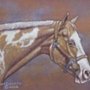 Paint Horse Print by Dorothy Coatsworth