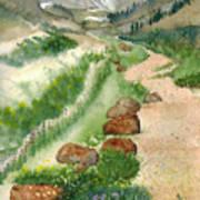 Paintbrush Trail Art Print