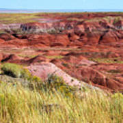 Painted Desert 0242 Art Print