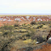 Painted Desert Winter 0571 Art Print