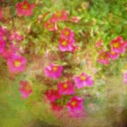 Painted Flowers Art Print