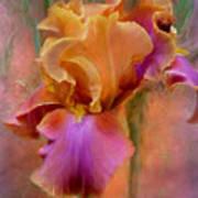 Painted Goddess - Iris Art Print