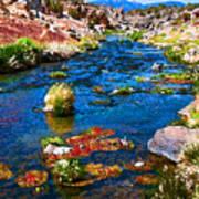 Painted Hot Creek Springs Art Print