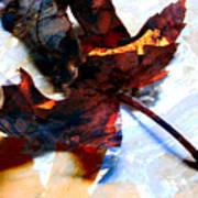 Painted Leaf Series 2 Art Print