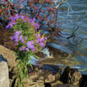 Painted River Flower Art Print