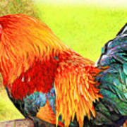 Painted Rooster Art Print