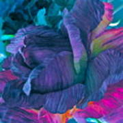 Painted Silk Art Print