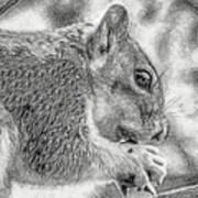 Painted Squirrel Art Print