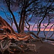 Painted Tree Art Print