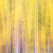 Painted Trees IIi Art Print