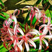 Painterly Effects Art Print