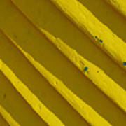 Painting It Yellow Art Print